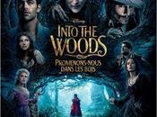 Cinéma Into Woods, Promenons-nous dans bois, critique