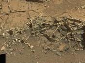 Curiosity détecté l'azote, ingrédient indispensable