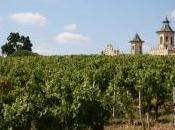 prestigieux vignobles découvrir dans Médoc