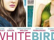 White bird (White blizzard)