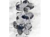 MOTOKO TACHIKAWA galerie Mansart avril 2015