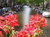 AMSTERDAM Dans carnet voyage...