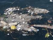 Méditerranée, dépotoir plastiques