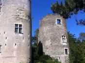 Château Cinq-Mars-la-Pile (37)