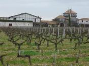 Primeurs 2014 appellation Pessac-Léognan vins blancs)