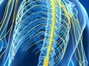 SCLÉROSE plaques: passe-t-il d'arrêt traitement? Neurology