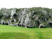 Slope Point Nlle Zélande