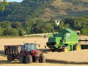 L'agriculture devenue secteur économique part entière