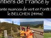 sentiers France Cinquante nuances vert Forêt Noire Belchen)