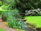 Jardins papier Evelyne Bloch-Dano
