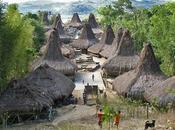 MAISONS TRADITIONNELLES WAIKABUBAK (Indonésie)