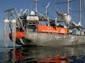 voilier Tara remonte océans dans filets