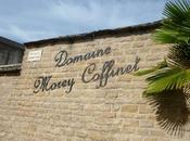 Visite domaine Morey Coffinet Chassagne-Montrachet