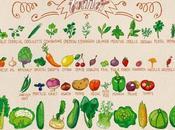 Calendrier fruits légumes Juillet
