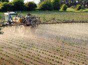 Pour psychanalyse l'agriculture moderne. L'agriculture intensive conséquences dramatiques santé.