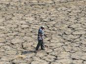 réchauffement climatique d'avance prévisions