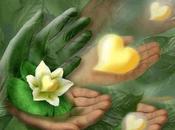 Instant vie... avec Thich Nhat Hanh
