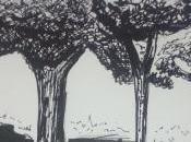 Croquis arbres
