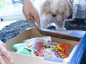 animaux Woufbox Juillet