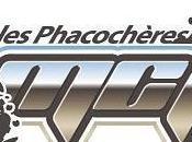 Rando Phacochères MCPS Ydes (15) octobre 2015