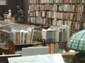 librairie indépendante beaux jours devant elle