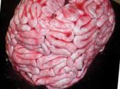 Gâteau cerveau