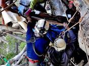 Corse: découverte exceptionnelle deux cercueils bois l'Âge Bronze