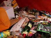 Mobilisation pour ramassage déchets forêt Fontainebleau