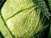 aliments plus sains pour santé suprême