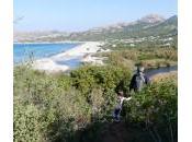 Corse l'automne… Ajaccio, Corte, Calvi famille