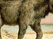 crâne fossilisé découvert Kazakhstan confirme licornes vécu Terre