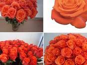 """D'après NIRP International, marché besoin quelques belles roses orange"""""""