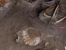 assyriens enterraient leurs morts avec tortues