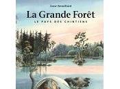 Anne Brouillard grande forêt, pays chintiens
