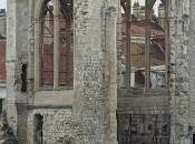 Divines Divas, MuDo Beauvais dans cadre Photaumnales