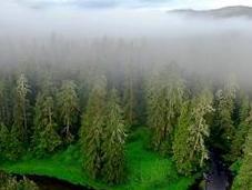 Pendant 13000 ans, bienfaits Premières Nations l'environnement...