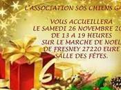 "Retrouvez l'association ""sos chiens galgos "" Marchés Noel Normandie Bretagnolles 27220 27/11/2016"