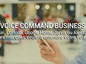 Voice Command Technology Voix Business