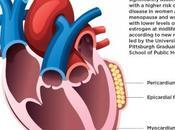 MÉNOPAUSE: péricardique, chaque graisse cardiaque entraîne risque Journal American Heart Association