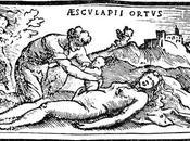 Césarienne, l'évolution d'une opération