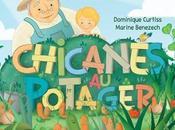 Chicanes potager dans meilleures ventes Amazon France