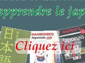 Critique Dictionnaire Maxi Poche Plus français-japonais