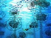 L'impression service l'écosystème marin