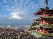 Sous cerisiers fleurs Japon hanami