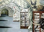 Année 1806 vente Leverian Museum