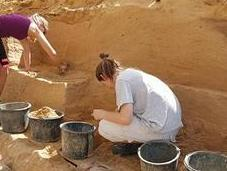 découverte dents fossilisées Allemagne pourrait réécrire l'histoire l'homme