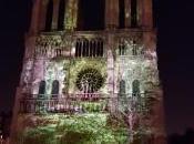 """Dame Coeur spectacle """"son lumière"""" Parvis Notre-Dame Paris gratuit. FABULEUX"""
