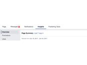 Facebook Page Insights avancé guide d'analyses pour marketeurs