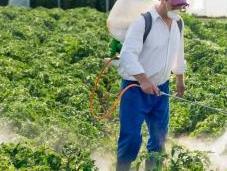 """Sulfoxaflor justice suspend vente deux insecticides """"tueurs d'abeilles"""""""