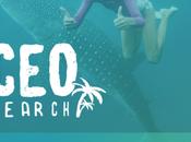cherchez plus meilleur monde Cancún avec poste (Cancun Experience Officer)